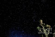http://fineartamerica.com/featured/simply-stars-angela-j-wright.html