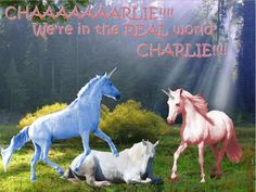 Charlie+the+Unicorn | Charlie the Unicorn REAL world, CHARLIE!!!!