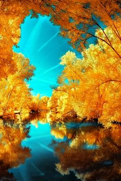 Autumn Reflection