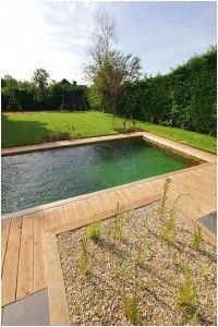 Natural Kit Pool Making A Natural Swimming Pool