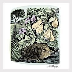 """Hidden Hedgehog"" by Angela Harding (vinyl block and silkscreen)"