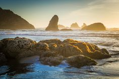 Discover 25 of the best hikes on the Oregon coast, featuring rugged coastline trails and epic ocean views. Oregon Coast Hikes, Oregon Coast Camping, Oregon Dunes, Southern Oregon Coast, Oregon Travel, Neskowin Beach, Boardman State Park, Oceanside Beach, Visit Oregon