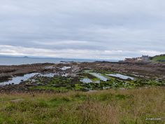View of Cellardyke at the start of our walk from Anstruther to Cambo Estate