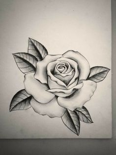 Hergestellt von Stella Luo Tätowierern in Toronto, Kanada - rose tattoos Rose Drawing Tattoo, Tattoo Sketches, Tattoo Drawings, Body Art Tattoos, Sleeve Tattoos, Rose Outline Drawing, Tatoos, Tattoo Crane, Rose Flower Tattoos