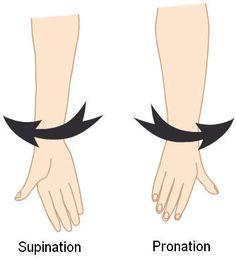 Pronacion.- movimiento del antebrazo y de la mano por el que el radio rota medial sobre su eje longitudinal.(baile asedeje) Supinación.- movimiento del antebrazo y de la mano el radio gira lateralmente sobre su eje longitudinal.(padre nuestro)