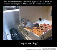This was me with a box of Krispy Kremes after a 5K. LOL