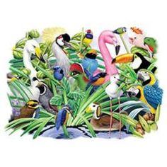 Exotic Birds Parrot HEAT PRESS TRANSFER for T Shirt Sweatshirt Tote Fabric #210b #AB
