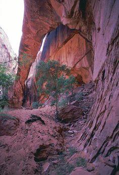 Morning Glory Natural Bridge - Moab, Utah.