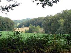 Accueil_CSS_2 - Le Petit Randonneur Vineyard, River, Outdoor, Places To Visit, Outdoors, Vine Yard, Vineyard Vines, Outdoor Games, The Great Outdoors