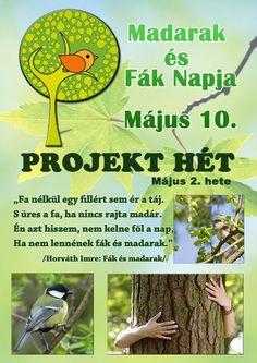 Bird Tree, Creative Writing, Green Day, Kindergarten, Education, Words, School, Kindergartens, Schools