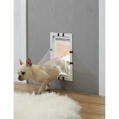 """Size: 9"""" W x 2.25"""" D x 14"""" H Provides dogs and cats with easy access between rooms or to the outdoors Slide in closing panel allows you to close off your pet's access from the pet door Soft window flap makes for a safe entry point for dogs and cats Easy to install with DIY assembly instructions included Give your dog or cat the freedom to come and go as they please with the PawsMark Soft Flap Pet Door. The pet door is easily installed on both indoor and outdoor doors or walls to give your pet ea Small Dog Door, Small Doors, Joo Joo, Small Cottage Homes, Pet Door, Outdoor Doors, Dog Rooms, Cat Room, Cat Treats"""