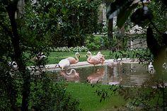 Palazzo Invernizzi. Il rosa all'improvviso.  via Dei Cappuccini, 32 - Milano