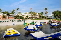 Best Orlando Vacation Packages: Where to find the best Orlando Hotel and Ticket Packages on the Web?