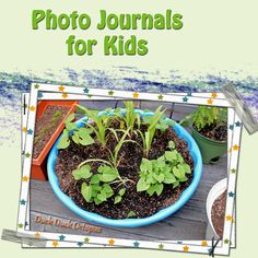 Photo journals allow young children to record observations in a meaningful way. This is also a great tool for kids who struggle with expressing their ideas in writing.