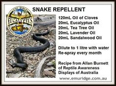 Snake repellent using essential oils...