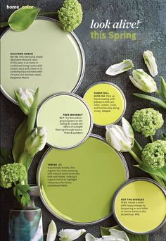 spring colors : yellows and greens Better Homes and Garden magazine's April color palette is so pretty and inspiring for Spring! Interior Paint Colors, Paint Colors For Home, Paint Colours, Room Colors, House Colors, Colour Schemes, Color Combos, Beautiful Color Combinations, Benjamin Moore Colors