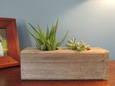 "Reclaimed Cypress Rectangular Succulent Planter for TWO / Recyled Wooden Succulent Planter (planter for 5, 2"" plants) by LeBrun Designs"