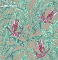Sunbird wallpaper by Matthew Williamson is a dense paradise of foliage and exotic sunbirds.  These birds are a distant cousin of the hummingbird, and are seen here darting amongst a luscious forest of palm leaves.  The birds are beautifully detailed in an etched style whilst the leaves provide a rich but uncomplicated backdrop.
