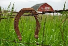 Rusty horseshoe on barb wire fence.
