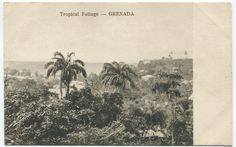 106 Best Grenada of Times Past images in 2019 | Spice