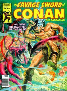 The Savage Sword of Conan - Nº 37