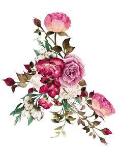 Illustration Art Drawing, Botanical Illustration, Floral Motif, Floral Prints, Art Floral, Colorful Roses, Bunch Of Flowers, Botanical Flowers, Flower Wallpaper