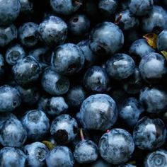 Recipe from the farmer: Lorraine's Blueberry Bars - Michigan Agriculture