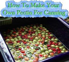 How To Make Your Own Pectin For Canning Read HERE --- > http://www.livinggreenandfrugally.com/how-to-make-your-own-pectin/