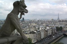 I have taken this exact picture from the top of Notre Dame! Long line to get in, but totally worth the wait