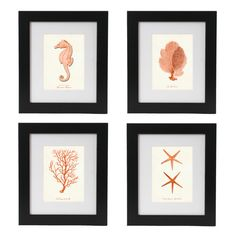 4 Coral Orange Nautical Art Print Set  Giclee by AdamsAleArtPrints, $30.00. Watercolor finish.