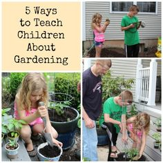 5 Ways to Teach Children Gardening Gardening is a lost art that the world seems to be slowly trying to recapture. The need for all things organic is starting to really gain some traction and our next generation of kids will be at the forefront of this new movement. Getting them interested early is vital. …