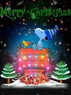 weihnachten video Merry Christmas from President Trump and First Lady Trump. Peanuts Christmas, Merry Christmas Greetings, Charlie Brown Christmas, Christmas Quotes, Christmas Pictures, Merry Christmas My Friend, Christmas Cookies, Christmas Scenery, Christmas Music