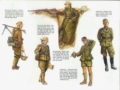 Uniformidad Afrika Korps y tropicales | Schullerpedia