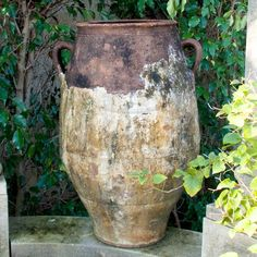 antique olive jar