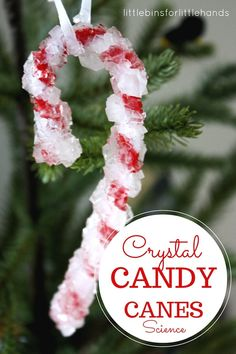 DIY Borax Crystal Candy Canes - just Borax and pipe cleaners.
