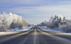 Read these 12 Tips to Help You Travel Safely this Season on our blog: selecthealth.org/blog