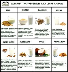Delicious Non Dairy Milk Alternatives food healthy weight loss health healthy food healthy living eating fat loss substitutes dairy alternatives non dairy Milk Recipes, Dairy Free Recipes, Flour Recipes, Cookie Recipes, Healthy Milk, Healthy Eating, Healthy Food, Healthy Weight, Healthy Desserts