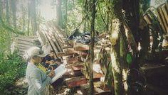 Tingo María: PNP incautó más de 12 mil pies tablares de madera ilegal