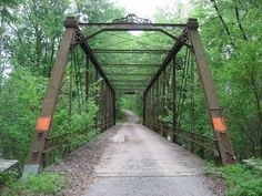 Northern portal of Bridge 246, which carries County Road 300E over the Patoka River north of Oakland City across the border between Gibson and Pike counties in the U.S. state of Indiana. Built in 1884, it is (along with the road and another bridge to the north) listed on the National Register of Historic Places as part of the Patoka Bridges Historic District.  Photo credit: Nyttend via Wikimedia Commons  commons.wikimedia.org/wiki/File:Bridge_246_at_Patoka,_nor...