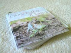 Moje Montessori Książeczka ze zwierzętami leśnymi