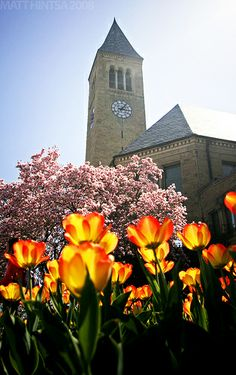 Visit Cornell this spring for and enjoy the lovely scenery! Great Places, Places To Go, Beautiful Places, Beautiful Scenery, Dream School, Cornell University, College Campus, Great Life, Travel Usa