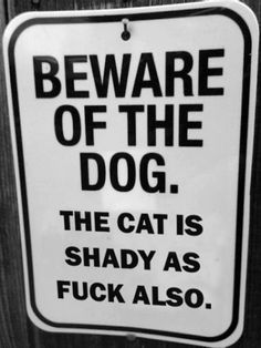 """""""Beware of Dog"""" and related parody signs that use irony, humor, clever wording, and bizarre imagery to make one laugh. Haha Funny, Funny Cats, Funny Stuff, Funny Shit, Pet Stuff, Random Stuff, Funny Animals, Crazy Animals, Freaking Hilarious"""