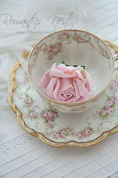 Rose & Gilt Teacup & Saucer