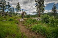 Brush Lake Trail Mountain Bike Trail, Bonners Ferry, Idaho
