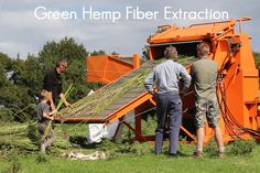 After almost 20 years of development, the technology to separate hemp fiber and cellulose fresh from the field is finally available as the Clarke D8 decorticator. This 2017 harvest we have successfully processed fresh hemp stalks into hemp fiber and hurd, products which can be utilized by a wide variety industries. This innovation is a
