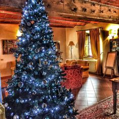 Christmastree at the borgo