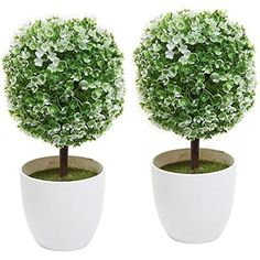 Set of 2 Artificial Faux Potted Tabletop White Flower Plant Topiary w/ White Planter Pots - MyGift® Home We stand behind our products and services to deliver to your doorsteps within the promised delivery window. We appreciate your business for any questions or concerns please contact via email.