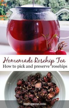 How to forage and prepare Rose-hips for making homemade tea. The flavor is rich and fruity and it's also packed with Vitamin C