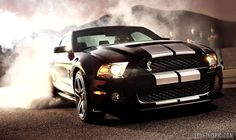 Shelby GT500 cars