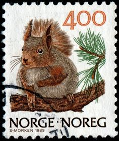 Stamps of Small Animals / Mammals / Fauna - Stamp Community Forum - Page 6